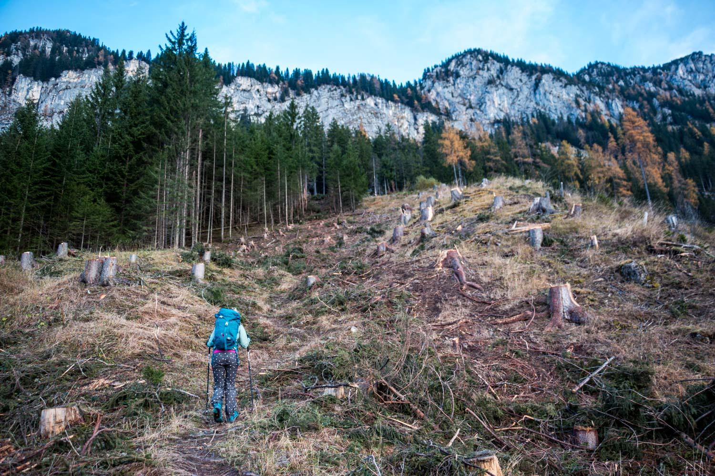 Anja auf dem Wanderweg, Lugauer